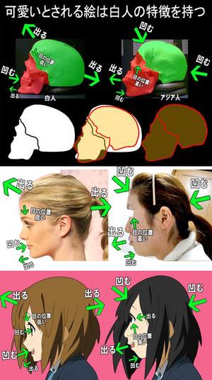 可愛いとされる絵は白人の特徴を持つ。日本人と白人の顔の違い。