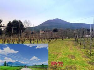 ナポリ ヴェスヴィオ山