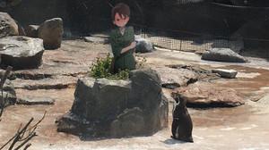 星野絵瑠(ほしの える・ペンギン)